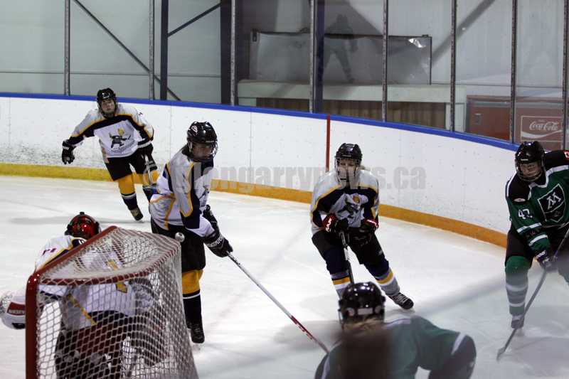 women's hockey action