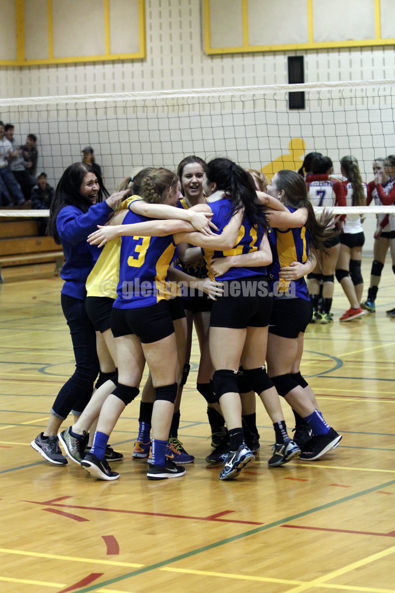 volleyball celebration