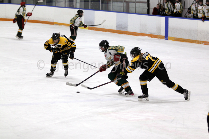 hockey action